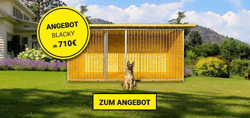 Hundezwinger Angebot