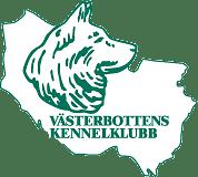 Vännäs - nationell @ Vännäs friluftsområde, Vännäs | Västerbottens län | Sverige