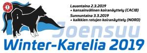 Vinter i Karelen