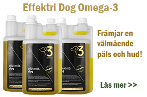 Effektri omega-3
