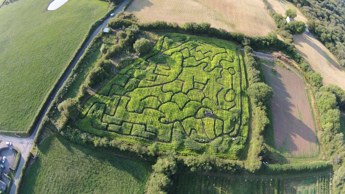 Size of Wales Maze