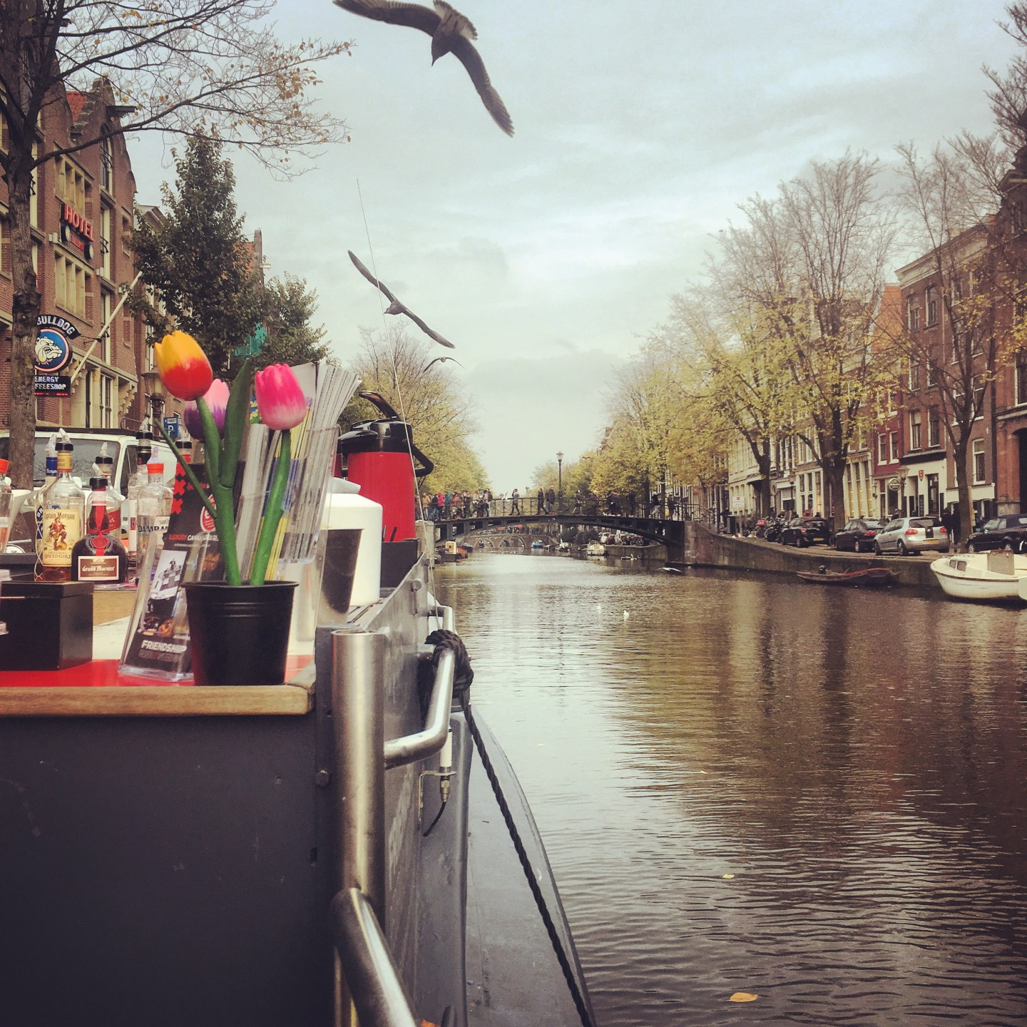 48 Hours in Amsterdam: City of canals