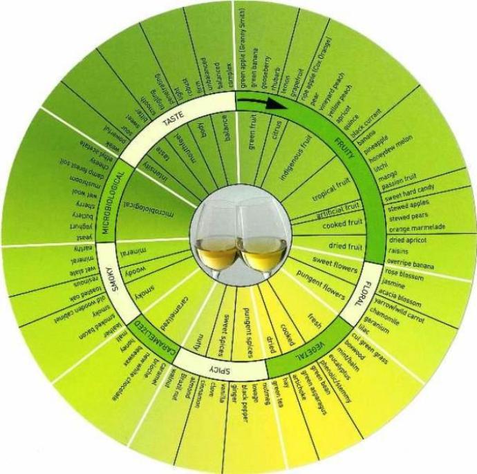 white wine aroma whel