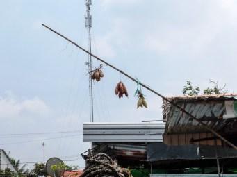 Голяма част от лодките търгуват с различни стоки и стават част от плуващите пазари, като често излагат стоките си по този начин