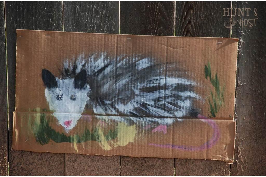 hunting possum