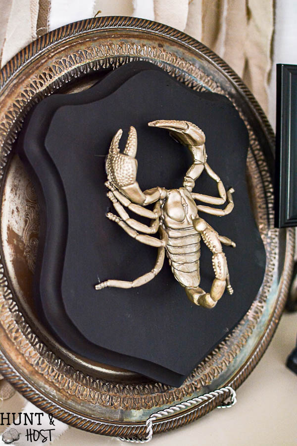 halloween decorating ideas from the dollar store these gilded bugs display cases are glamorous and
