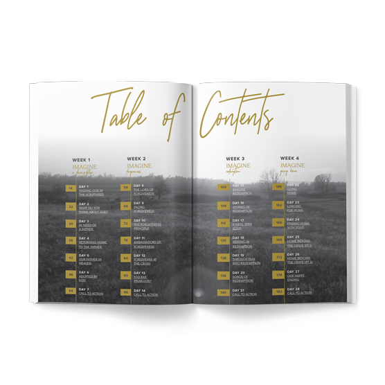 Take a peek at the exciting bible study journal series from Bart Millard of Mercy Me based on the hit movie I Can Only Imagine.