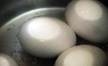 1700 for 2 boiled eggs