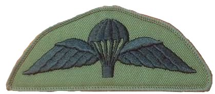 Parachute Wings Subdued Military Badge