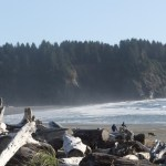 coast line, washington State