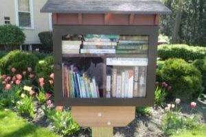 Library Lounge and Little Free Library Locations