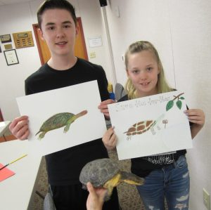 Project Tween: Sketch a Turtle (August 2019) Gallery