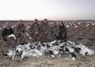 Missouri snow goose hunting.
