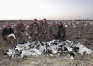 Missouri snow goose hunting.