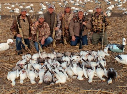 We are highly successful at hunting snow geese but remember these are migrating birds and weather can affect the hunting.
