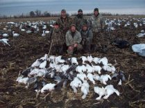 Here is the Weiss party. He has hunted with us for about 10 years. They are good shots and always seem to do well. This day they shot 52 snow geese.