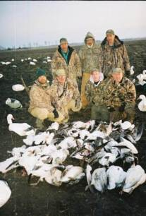 These snow goose hunters left at noon on their last day with nice pile of snow geese. Up North Outdoors snow goose guides Curt Schrader, Jim Weston, and owner Tracy Northup hunted the afternoon. Total for the field that day was 101 snow geese.