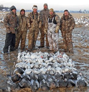 This is one of those days you don't expect. A day after the ice storm in Arkansas with everything frozen the snow geese bombed into this spread.