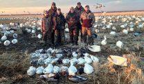 Spring Snow Goose Hunts 2014_083
