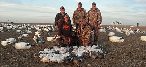 Spring Snow Goose Hunts 2014