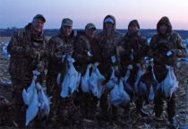 These hunters were happy with an average snow goose hunt. It's more than a limit of Canada geese back home.