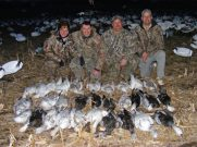 Missouri snow goose hunting can be a lot of fun.