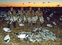 spring-snow-goose-hunt-2013-113