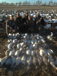 MO_NOKES Arkansas 2015 Snow Goose Hunt