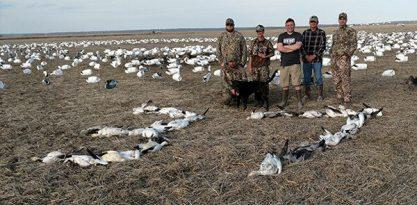 Spring Snow Goose Hunting Www.huntupnorth.com 198