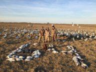 Spring Snow Goose Hunting Www.huntupnorth.com 220