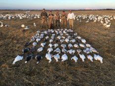 Spring Snow Goose Hunting Www.huntupnorth.com 242