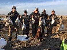 Spring Snow Goose Hunting Www.huntupnorth.com 243