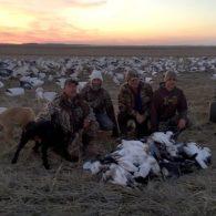 Spring Snow Goose Hunting Www.huntupnorth.com 267