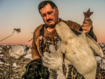 Arkansas Snow Goose Hunting Guide