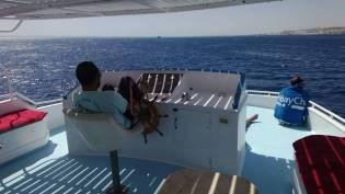 Entspannter Kapitän - hurghada