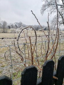 Lincoln County Kentucky Ice Storm 2021