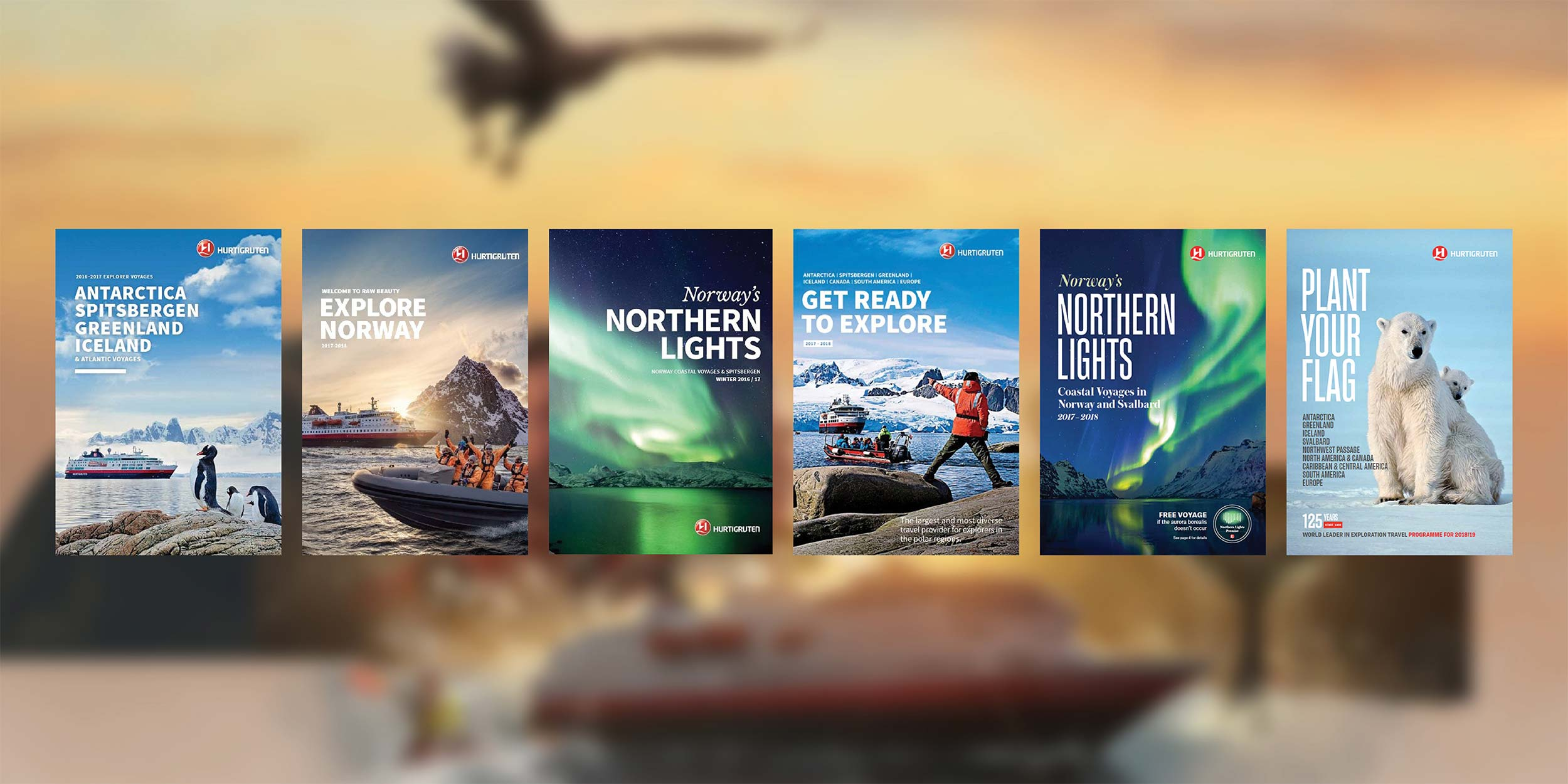 Order And Read Brochure Norway Northern Lights