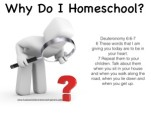Why Do I Homeschool?