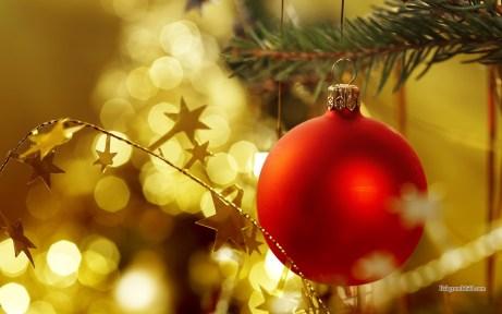 Julfest 10 decemeber