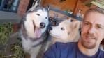 Husky Rescue South Africa Gentleman Max adopted
