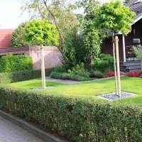 Vorgartengestaltung im Raum Wilhelmshaven, Wittmund, Jever
