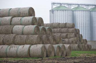 stacked dry hay bales.jpg