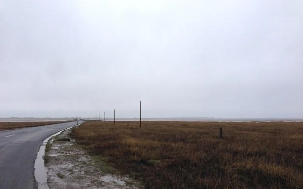 Tall, thin wooden waymarkers on the Pilgrim's Path to Holy Isle © Amanda Wagstaff 2016