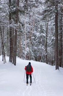 Poplar Stream Trail, Maine Huts & Trails, hut2hut