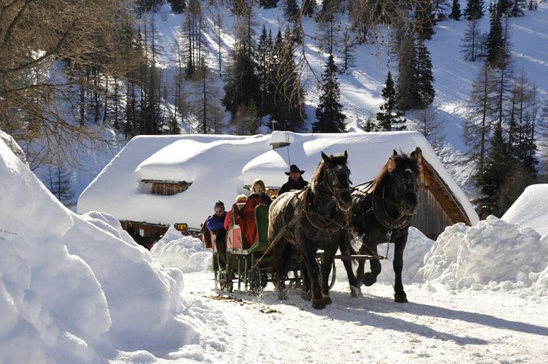 Horses In The Fall Wallpaper Horse Drawn Sleigh Rides Winter Holidays At Katschberg