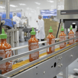 Story of Sriracha: How hot sauce launched by refugee from Vietnam spawned a food empire