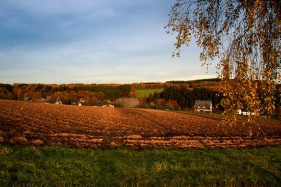 Blick über Heisberg nach Osten