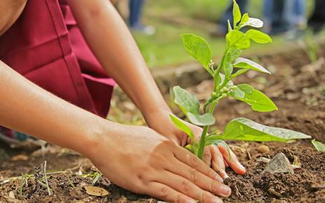 Environmental performance grants