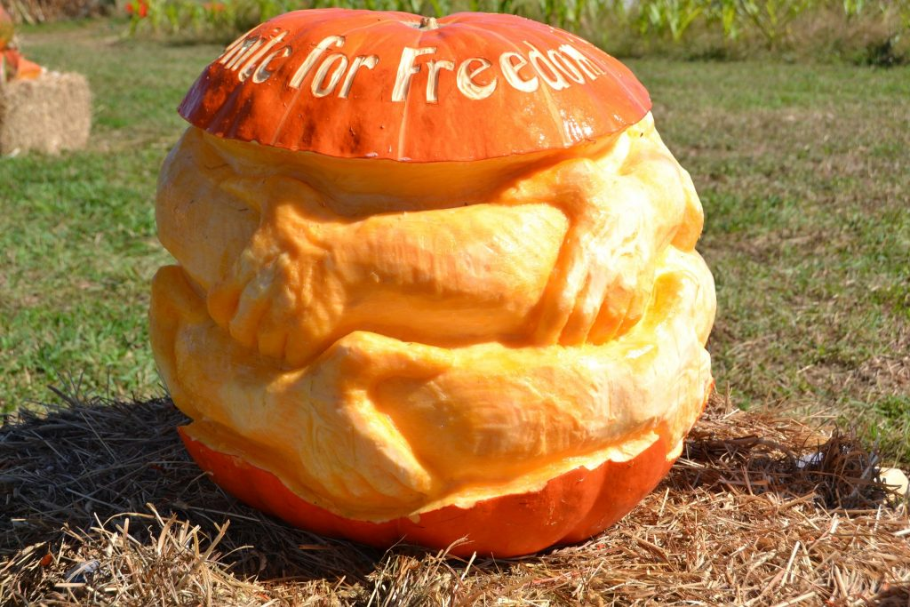 2nd Annual Amazing Pumpkin Carve Winners Announced And Freedom Pumpkin Wins Best In Show