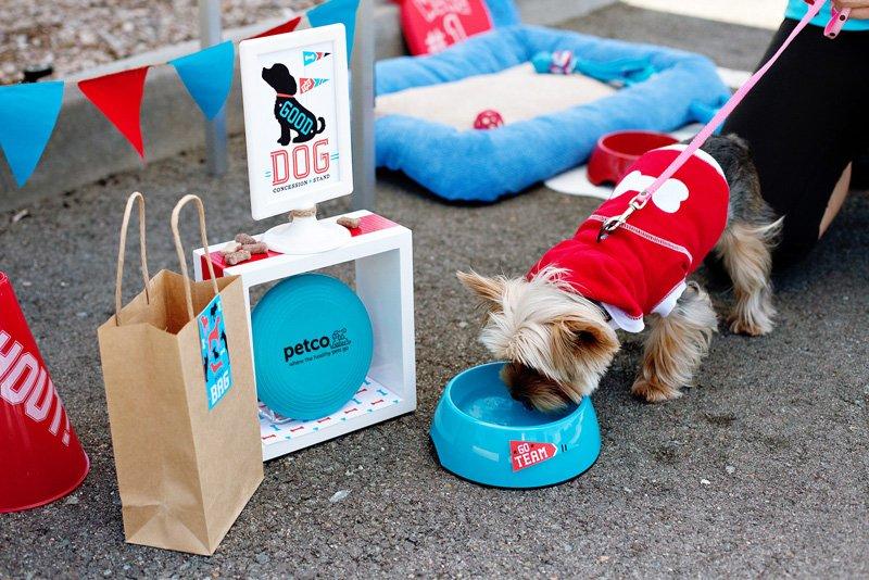 21_dog-treat-buffet_7